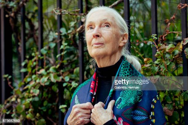 Primatologist Jane Goodall is photographed for New York Times on October 17 2017 in New York City PUBLISHED IMAGE