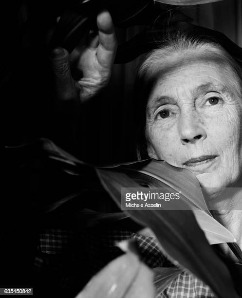 Primatologist Jane Goodall is photographed on September 12 2001 in New York City