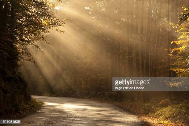 Primeros rayos de sol