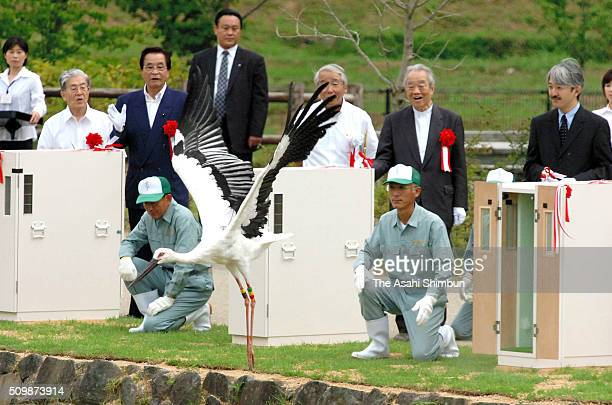 Prince Akishino and Princess Akishino release an oriental stork on September 24, 2005 in Toyooka, Hyogo, Japan.