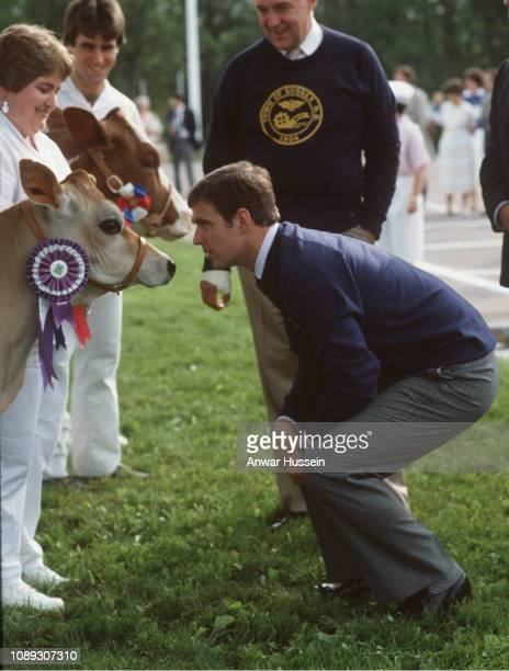 Prince Andrew comes face to face with a cow during a visit to Canadaon June 30 1985 in Canada
