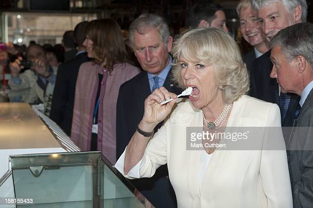 Prince Charles And Camilla Visit A Square In Madrid Before Visiting A Market Where They Tried Some Frozen Yoghurt