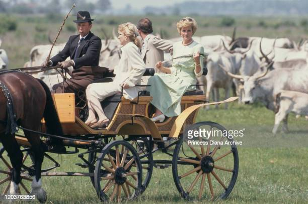 Prince Charles and Diana, Princess of Wales visit the Bugac puszta in the Kiskunsag National Park, Hungary, May 1990. Diana is wearing a pale green...