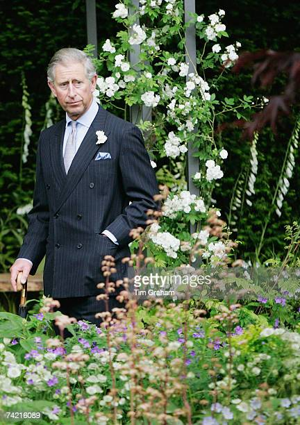 Prince Charles, Prince of Wales admires one of the gardens at RHS Chelsea Flower Show on May 21, 2007 in London, England.