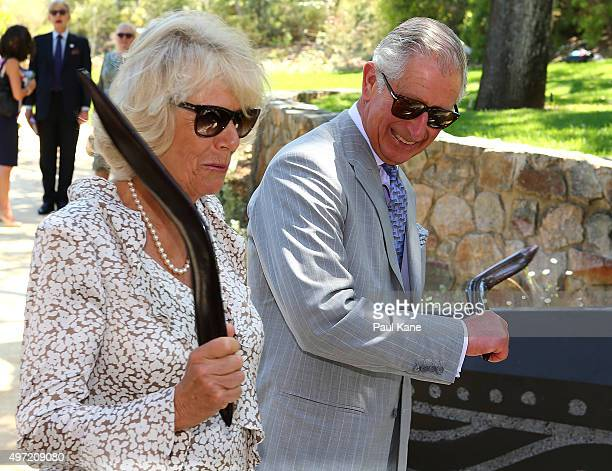 Prince Charles Prince of Wales and Camilla Duchess of Cornwall hold boomerangs while visiting Kings Park on November 15 2015 in Perth Australia The...