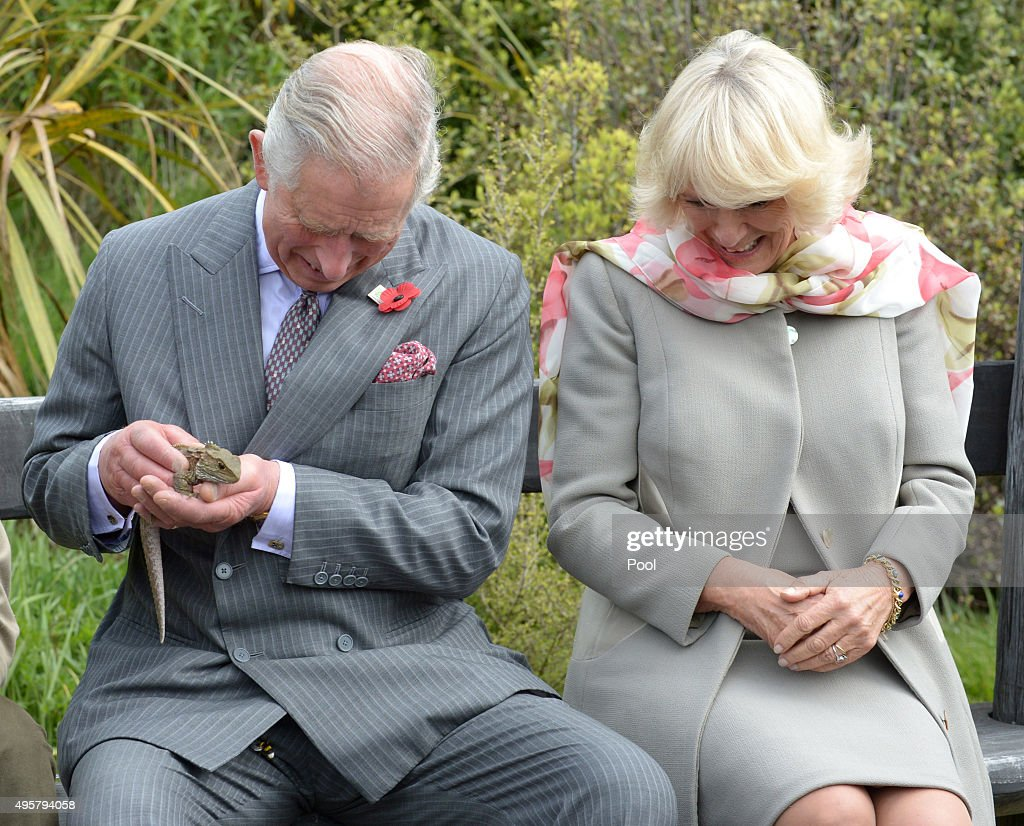 Prince Charles, Prince of Wales and Camilla, Duchess of Cornwall react as a bumblebee briefly flies inside the Prince's jacket as he handles a tuatara during a visit to the Orokonui Ecosanctuary on November 5, 2015 in Dunedin, New Zealand. The Royal couple are on a 12-day tour visiting seven regions in New Zealand and three states and one territory in Australia.