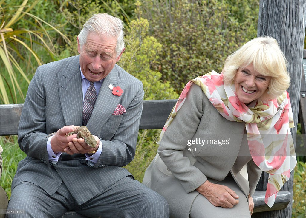 Prince Charles, Prince of Wales and Camilla, Duchess of Cornwall react as the Prince handles a tuatara during a visit to the Orokonui Ecosanctuary on November 5, 2015 in Dunedin, New Zealand. The Royal couple are on a 12-day tour visiting seven regions in New Zealand and three states and one territory in Australia.