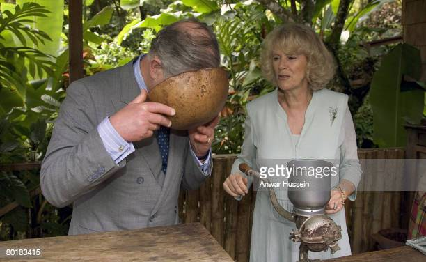 Prince Charles Prince of Wales and Camilla Duchess of Cornwall smell cocoa at the Fondoux Cocoa Plantation on March 7 2008 in Soufriere Saint Lucia