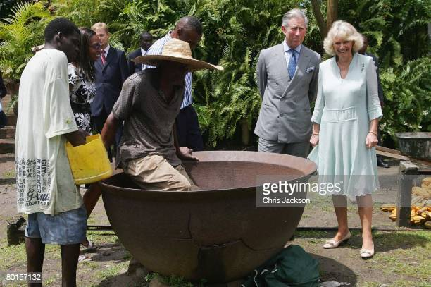 Prince Charles Prince of Wales and Camilla Duchess of Cornwall watch as cocoa beans are mixed at Fondoux Plantation during a day long tour of Saint...