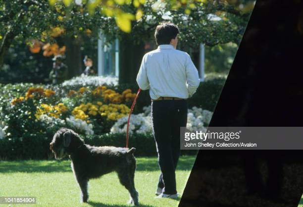 Prince Charles Prince of Wales and Diana Princess of Wales visit Washington DC Lucky a Bouvier des Flandres belonging to President of the USA Ronald...