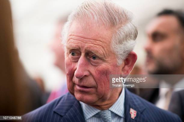 Prince Charles Prince of Wales attends a WasteToWealth Summit at Southwark Integrated Waste Management Facility on November 22 2018 in London...