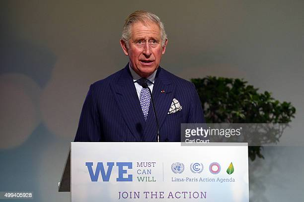 Prince Charles Prince of Wales gives the opening address at the first highlevel session of the Lima Paris Action Agenda on forests at the United...