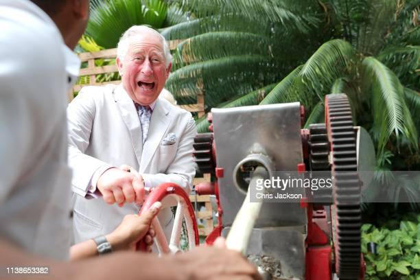 Prince Charles, Prince of Wales grinds sugar cane during a visit to a paladar called Habanera, a privately owned restaurant on March 27, 2019 in...