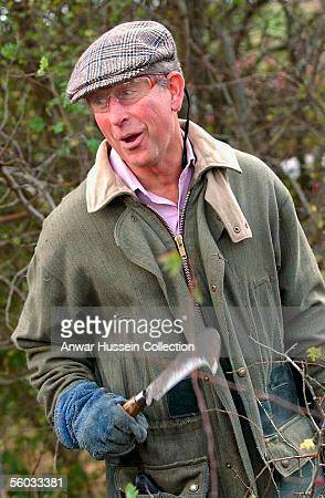 Prince Charles Prince of Wales has a laugh during the National Hedge Laying Championships at Home Farm on October 29 2005 in Tetbury Gloucestershire...