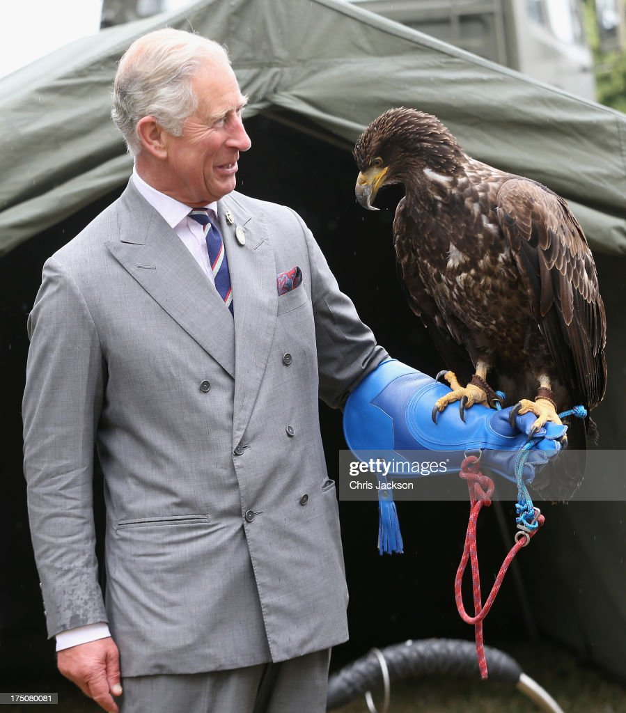 Prince Charles, Prince of Wales holds a bald eagle called Zephyr during a visit to the 132nd Sandringham Flower Show at Sandringham House on July 31, 2013 in King's Lynn, England.
