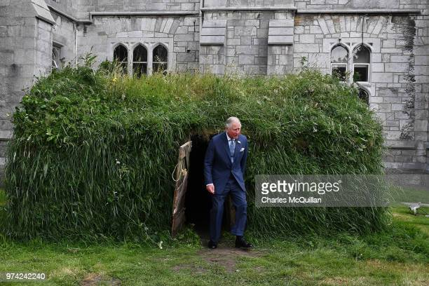 Prince Charles Prince of Wales inspects a 'Famine hut' at University College Cork on June 14 2018 in Cork Ireland The Prince of Wales and Duchess of...