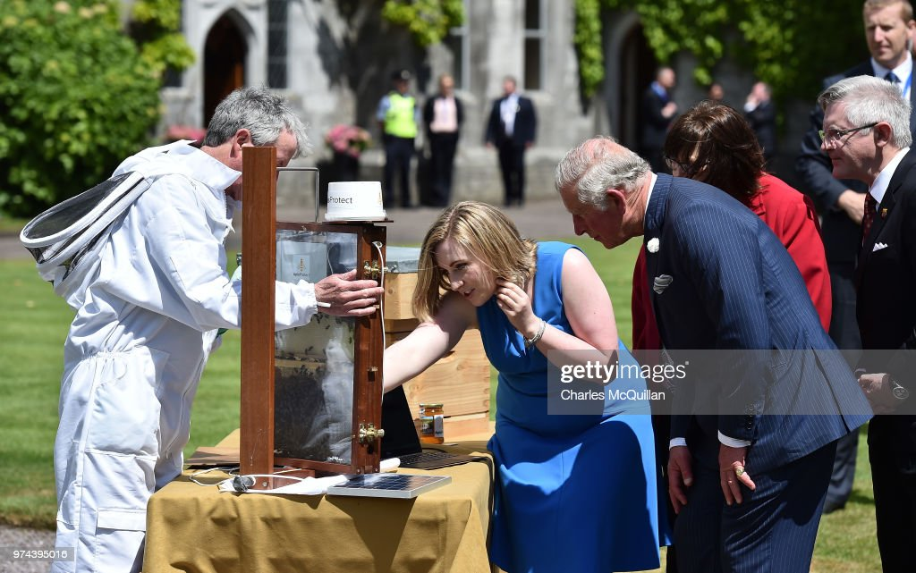 Prince Of Wales And Duchess Of Cornwall Visit Ireland and Northern Ireland : News Photo