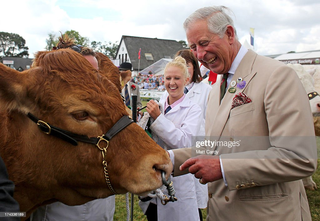 Prince Charles, Prince of Wales laughs as he views livestock in the show ring as visits the Royal Welsh Show at Royal Wales Showground on July 24, 2013 in Builth Wells, Wales.