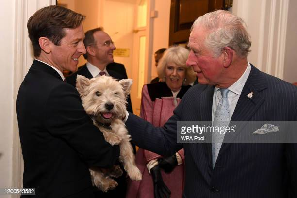 Prince Charles, Prince of Wales meets Monty the dog during a tour of the Cabinet Office on February 13, 2020 in London, England. Their Royal...