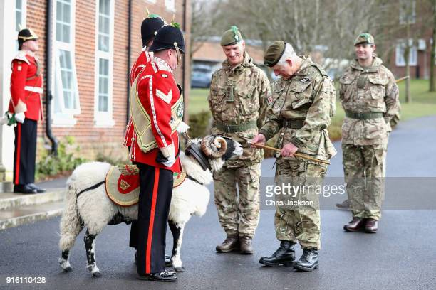 Prince Charles Prince of Wales meets Private Derby the ram mascot of the Mercian Regiment during his visit to Bulford Camp on February 9 2018 in...