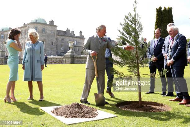 Prince Charles Prince of Wales plants a tree ahead of a civic reception at the Powerscourt House and Gardens during the visit with Camilla Duchess of...
