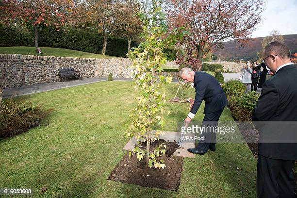 Prince Charles Prince of Wales plants a tree as he visits the Aberfan Memorial Garden and meets villagers as they mark the 50th Anniversary of the...