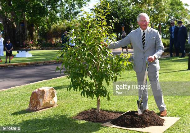 Prince Charles, Prince of Wales plants a tree at a tree planting ceremony during a reception at Government House on April 10, 2018 in Darwin,...