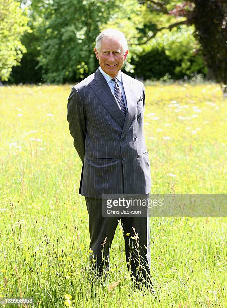 Prince Charles Prince of Wales poses in the meadows at Highgrove House at the launch for the Coronation Meadows Initiative on June 5 2013 in Tetbury...