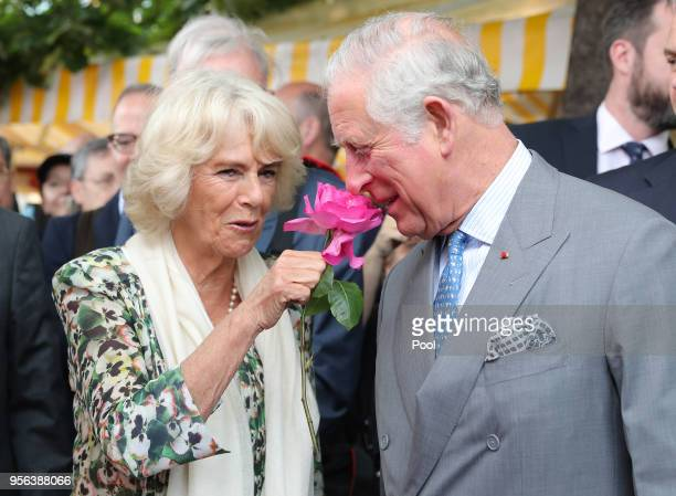 Prince Charles Prince of Wales smells a rose offered to him by Camilla Duchess of Cornwall during a visit to Nice Flower Market on May 9 2018 in Nice...