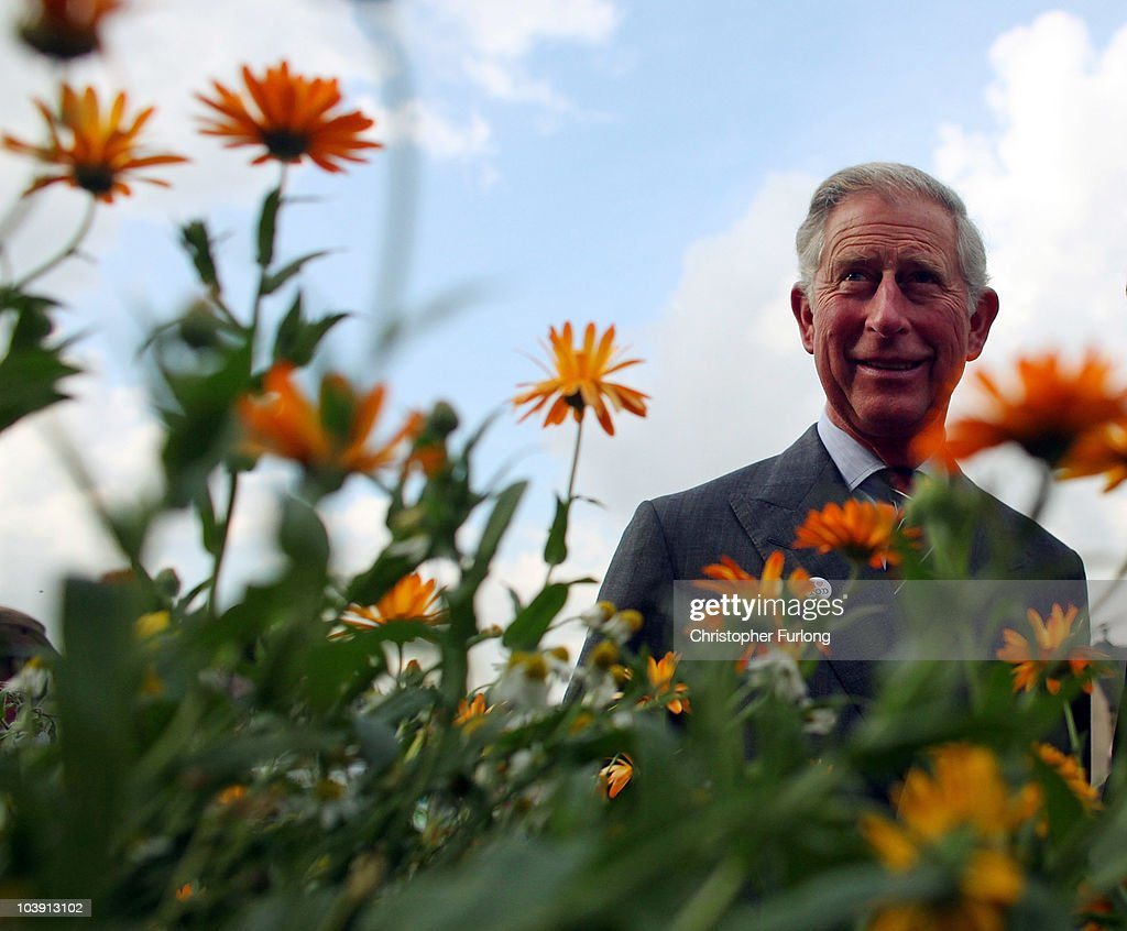 Prince Charles, Prince of Wales tours a herb garden during his visit to Todmoreden today on September 8, 2010 in Todmorden, England. Prince Charles met with volunteers of Incredible Edible Todmorden and saw examples of where public spaces have been used to grow vegetables, fruit and herbs during his five day tour of the UK to promote sustainable living. Prince Charles will be travelling on the Royal Train which is powered by bio fuel as he takes his tour to cities and towns from Glasgow to London.