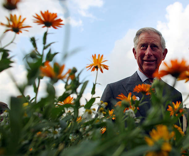 UNS: In Profile - Prince Charles