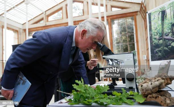 Prince Charles Prince of Wales uses a microscope to view slides showing different wood densities during a visit to the Royal Botanic Gardens on May...