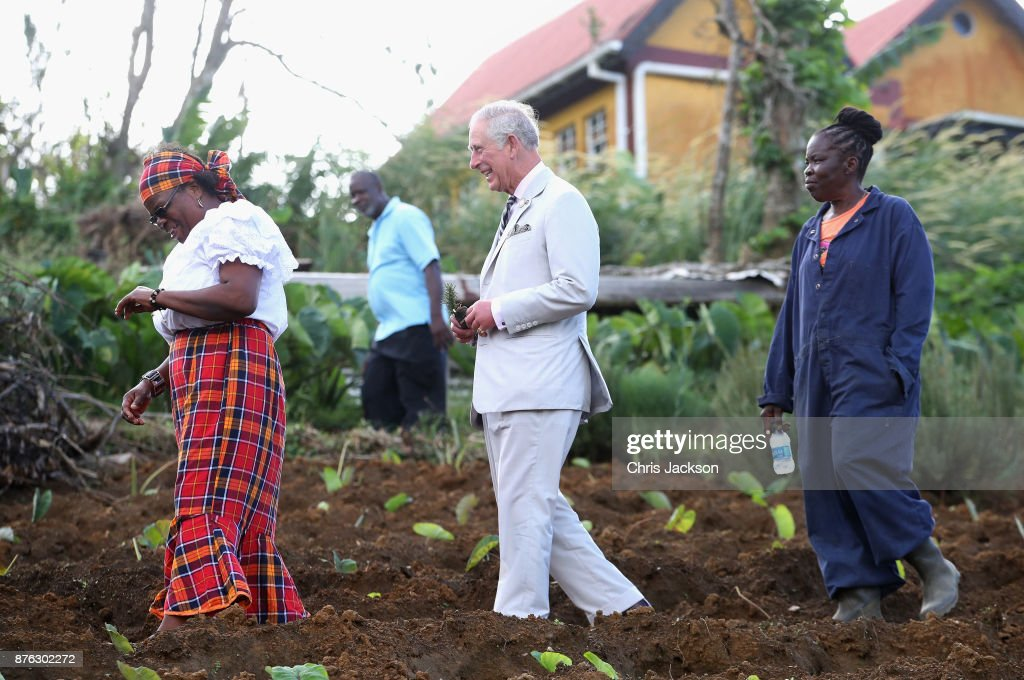 Prince Charles, Prince of Wales visits Bellevue Chopin Farm to discuss the impact of Hurricane Maria on local agriculture and is given a tour by local farmer Madeleine Raphael (R) on November 19, 2017 in Dominica. The Prince of Wales is on a three day visit to the Caribbean to visit residents of a number of Islands who have been affected by the devastating hurricanes of September.