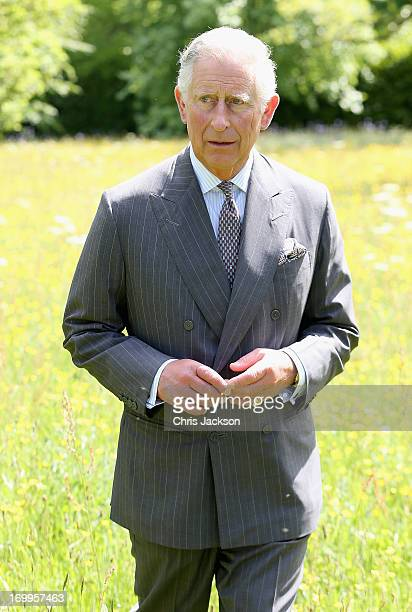 Prince Charles Prince of Wales walks in the meadows at Highgrove House at the launch for the Coronation Meadows Initiative on June 5 2013 in Tetbury...