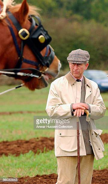 Prince Charles Prince of Wales watches participants during the National Hedge Laying Championships at Home Farm on October 29 2005 in Tetbury...