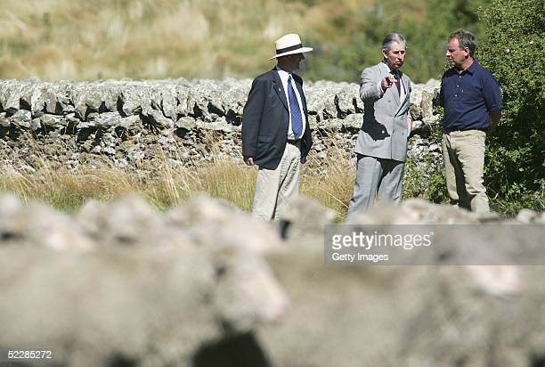 Prince Charles talks with farmer Tony Jopp and New Zealand Minister of Agriculture Jim Sutton as merino sheep are mustered past during a visit to...