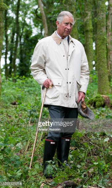 Prince Charles, The Prince Of Wales watches apprentices from British Horse Loggers logging in woodland on his Llwynywermod Estate on July 10, 2012 in...