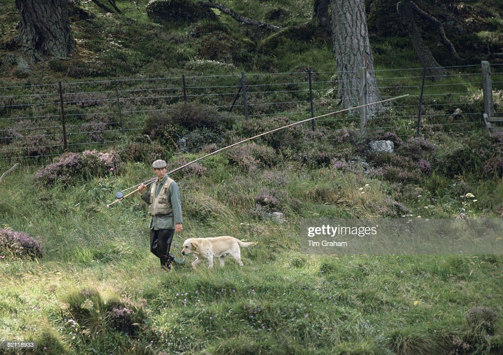 Prince Charles Walking With His Labrador Dog Called Harvey After Fishing In The River Dee On The Balmoral Castle Estate