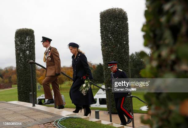 Prince Edward, Earl of Wessex and Sophie, Countess of Wessex arrive for a service on the Armed Forces Memorial during Armistice Day commemorations at...