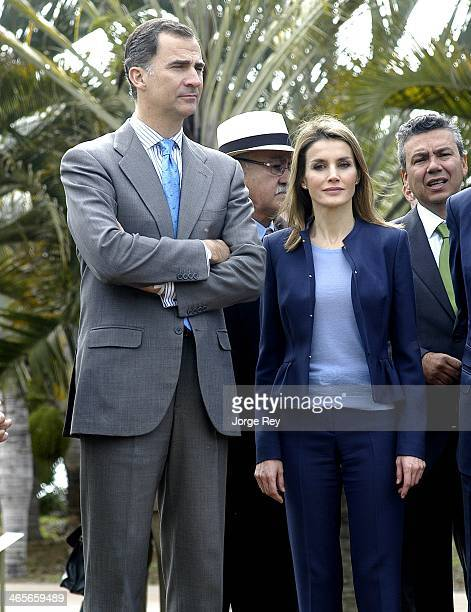Prince Felipe and Princess Letizia of Spain are seen the inauguration of Palmetum Santa Cruz de Tenerife on January 28, 2014 in Santa Cruz de...
