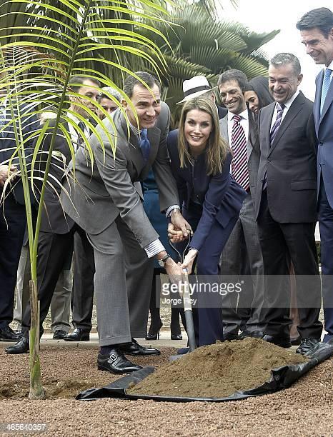 Prince Felipe and Princess Letizia of Spain plant a tree during their visit to Palmetum on January 28, 2014 in Santa Cruz de Tenerife, Spain.
