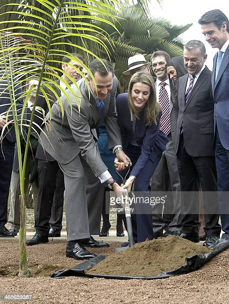 Prince Felipe and Princess Letizia of Spain plant a tree the inauguration of Palmetum Santa Cruz de Tenerife on January 28, 2014 in Santa Cruz de...