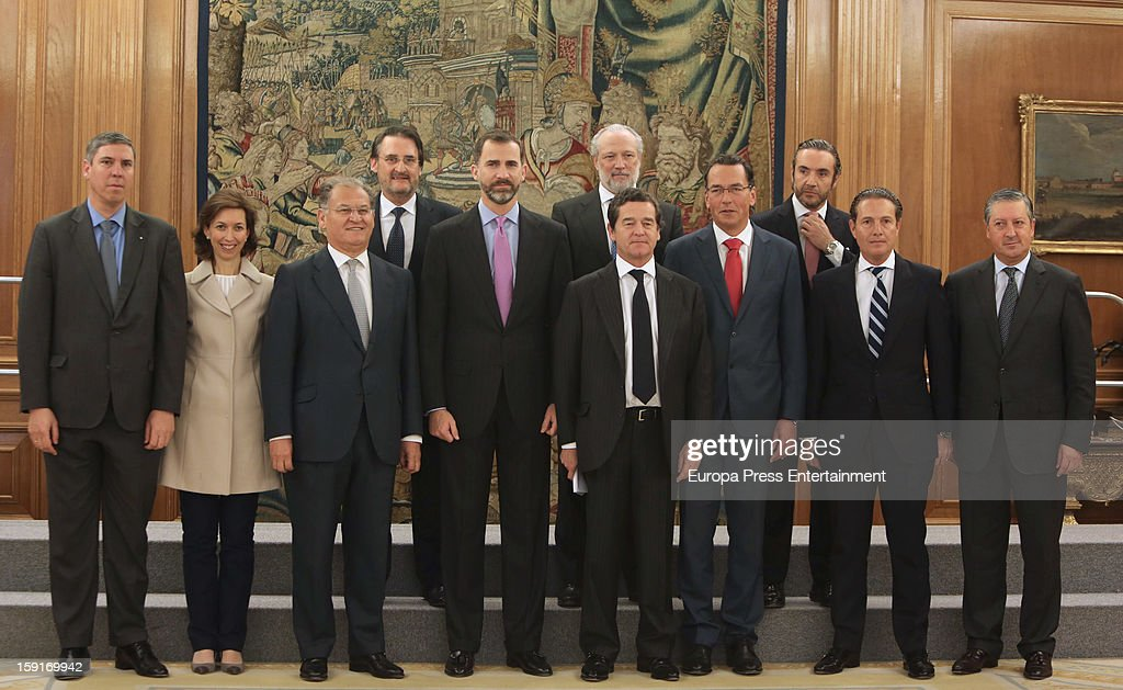 Prince Felipe of Spain (front 4th L) attends audiences at Zarzuela Palace on January 9, 2013 in Madrid, Spain.