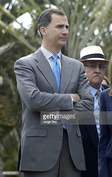 Prince Felipe of Spain attends the inauguration of Palmetum Santa Cruz de Tenerife on January 28, 2014 in Santa Cruz de Tenerife, Spain. The Palmetum...