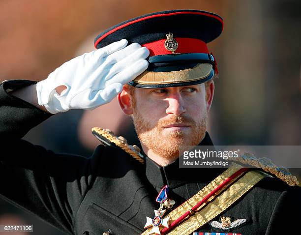 Prince Harry attends the Armistice Day Service at the National Memorial Arboretum on November 11, 2016 in Alrewas, England. Armistice Day...