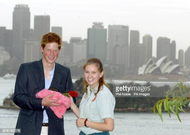 Prince Harry cradles a ring-tailed possum and chats to a zoo keeper during a photocall at Taronga Zoo in Sydney, Australia, to mark the start of his...