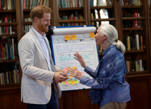 GBR: The Duke Of Sussex Attends Dr. Jane Goodall's Roots & Shoots Global Leadership Meeting