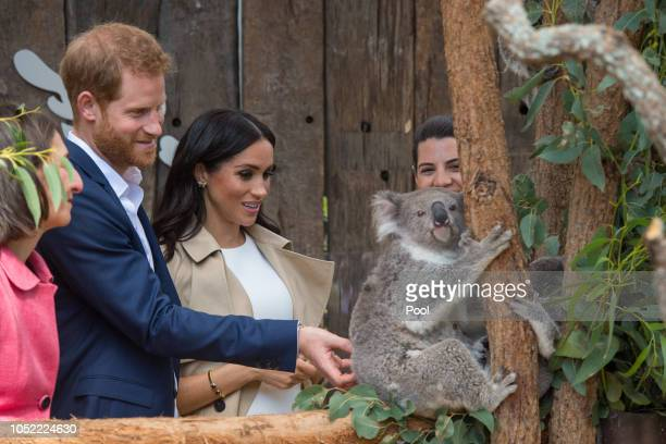 Prince Harry, Duke of Sussex and Meghan, Duchess of Sussex meet a Koala called Ruby during a visit to Taronga Zoo on October 16, 2018 in Sydney,...