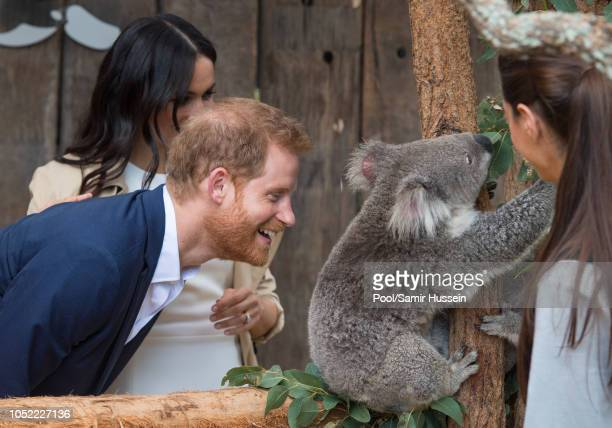 Prince Harry Duke of Sussex and Meghan Duchess of Sussex meet a koala during a visit to Taronga Zoo on October 16 2018 in Sydney Australia The Duke...
