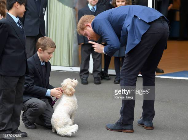 Prince Harry Duke of Sussex arrives to take part in a tree planting project in support of The Queen's Commonwealth Canopy initiative together with...